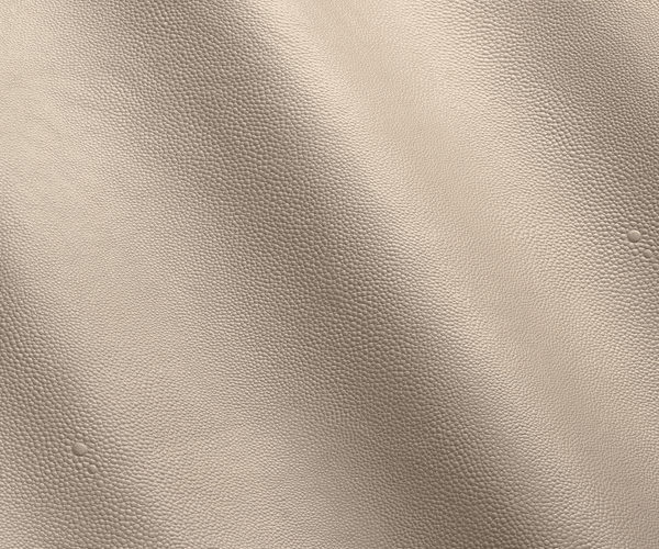 Forli-Armchair-Mapswonders-5-Stingray-Leather-Detail